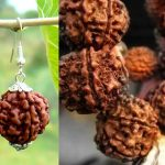 Rudraksha and Its Importance