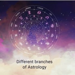 Different branches of Astrology-StarsTell
