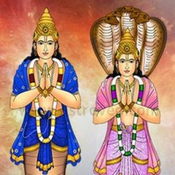 Rahu in Gemini and Ketu in Sagittarius