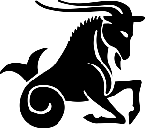 मकर गोचर