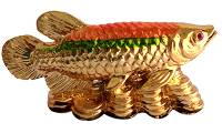Starstell, Feng Shui Fish, Arowana Fish, Colourful Arowana Fish, Starstell Feng Shui Colorful Arowana Fish on Bed of Wealth Showpiece (Polyresin, 13.5 cm)